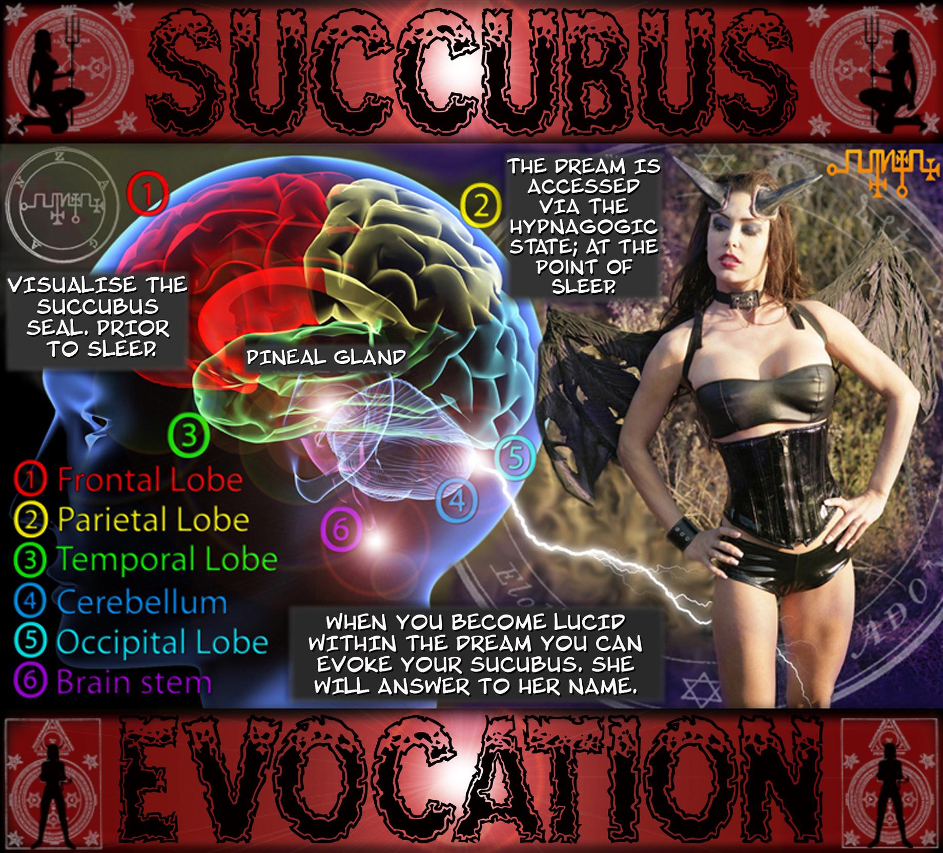 escort dreams sybian 2014