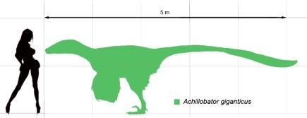 dinosaur_achillobator_scale