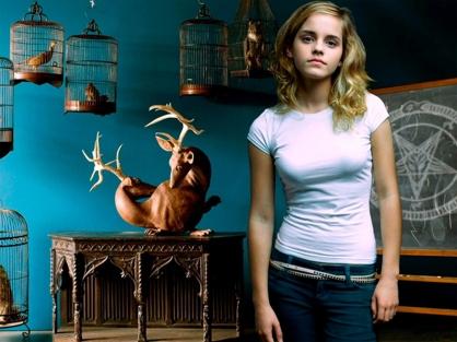 goetia_girls_emma_watson_hermione_granger_hogwarts_schoolgirl_witch_occult_witchcraft_lucid_dream_succubus_evocation