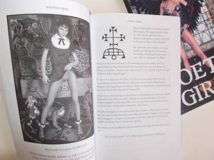 goetia_girls_lilith's_harem_succubus_artbook_demon_girl_grimoire_of_faustus_crow_9a