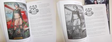 goetia_girls_faustus_crow_succubus_art_book_d
