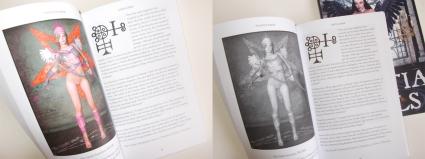 goetia_girls_faustus_crow_succubus_art_book_h